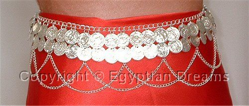 Coin Belt with Loops (Silver)